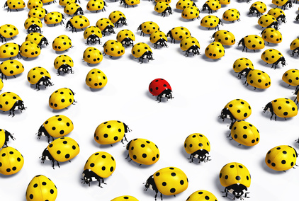 Loneliness in the workplace: Crowd of yellow ladybugs marginalise a red one taking distance from it, on a white background